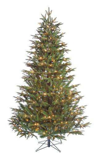 5 Minute tree Frasier LED