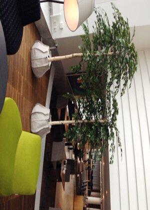 Hilton, Estocolmo