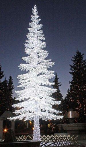 Broschyr Wexter Jul